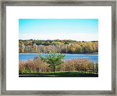 Natures Gift Framed Print
