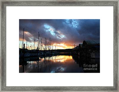 Nature's Glory Framed Print by Alison Tomich