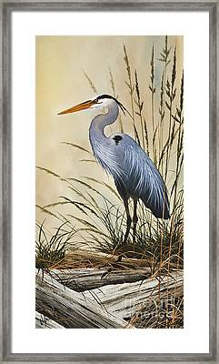 Natures Grace Framed Print