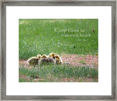 Nature's Heart Framed Print by Bill Wakeley