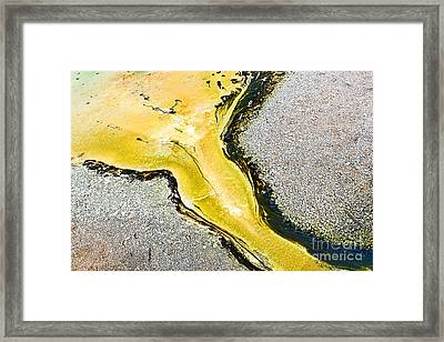 Nature's Inkblot Test - Abstract Runoff Of A Hot Spring With Algae And Bacteria  Framed Print by Jamie Pham