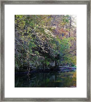 Natures Inspiration Framed Print by Bruce Bley