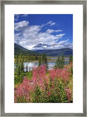 Natures Majesty Framed Print