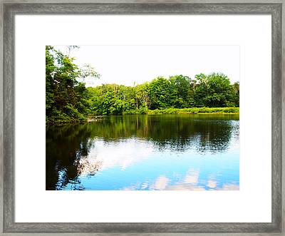 Framed Print featuring the photograph Natures Mirror by Deborah Fay