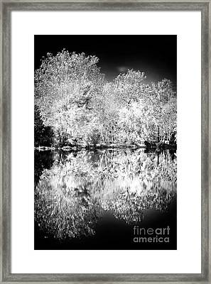 Natures Mirror Framed Print by John Rizzuto