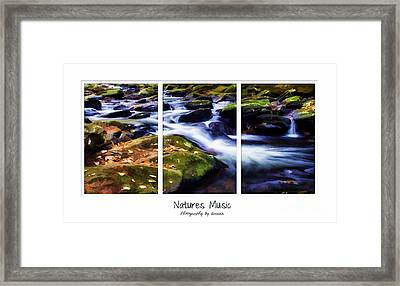 Natures Music Framed Print by Darren Fisher