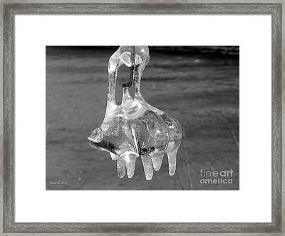 Framed Print featuring the photograph Nature's Ornament by Nina Silver