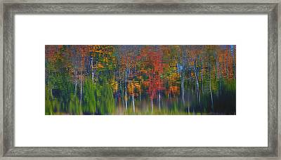Nature's Paint Brush Framed Print by Gary Hall