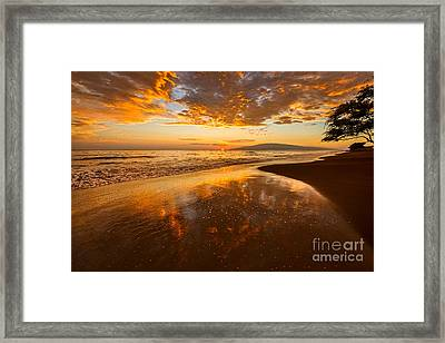 Nature's Painting Framed Print by Jamie Pham
