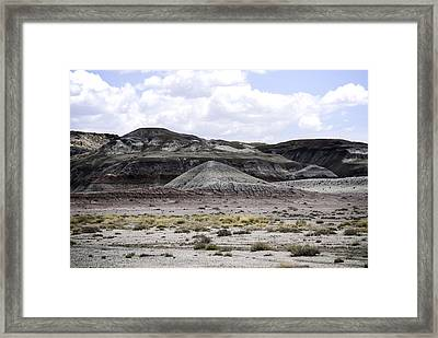 Natures Palette Framed Print by Judy Hall-Folde