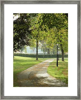 Nature's Path Framed Print