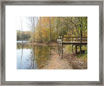 Nature's Patio Framed Print by Guy Ricketts