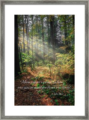 Natures Peace Framed Print by Bill Wakeley