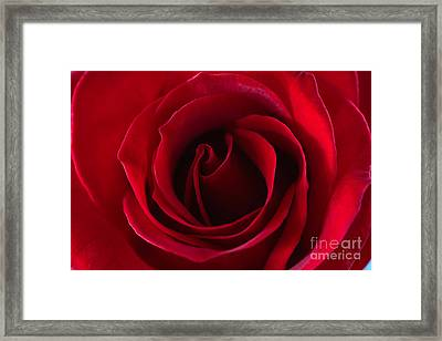 Natures Perfection All Proceeds Go To Hospice Of The Calumet Area Framed Print