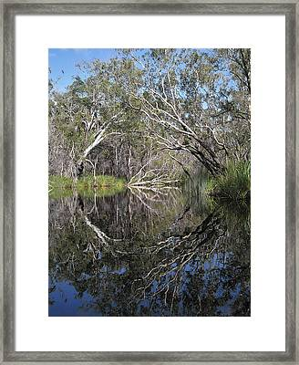 Natures Portal Framed Print