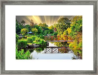 Nature's Reflections Framed Print by Judy Palkimas