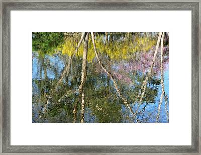 Nature's Reflections Framed Print