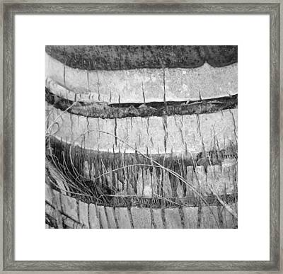 Nature's Repetition Framed Print by Natache  DOyen