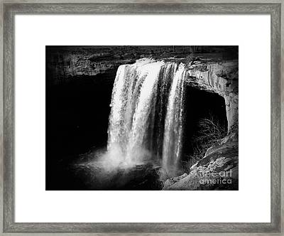 Natures Roar Framed Print