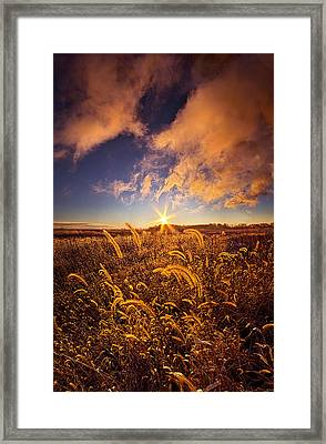 Nature's Romm With A View Framed Print by Phil Koch