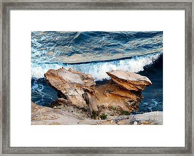 Natures Sculptures I Framed Print by Patricia Griffin Brett