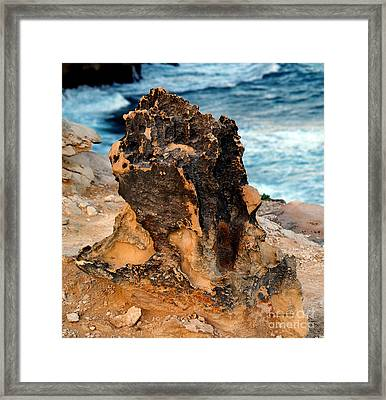 Natures Sculptures II Framed Print by Patricia Griffin Brett