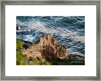 Natures Sculptures Iv Framed Print by Patricia Griffin Brett