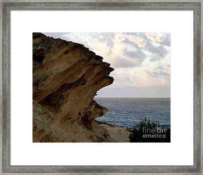 Nature's Sculptures Viii Framed Print by Patricia Griffin Brett