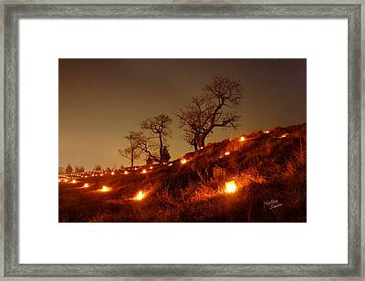 Framed Print featuring the photograph Nature's Sentinels 12 by Judi Quelland