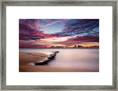 Nature's Show Framed Print by Jorge Maia