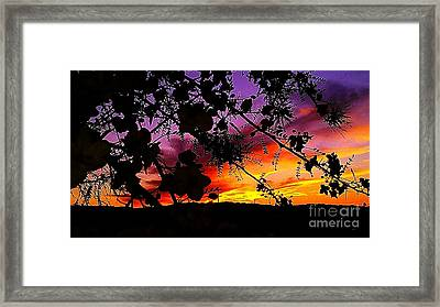 Nature's Silohuette Framed Print by Chris Tarpening
