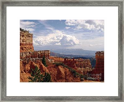 Nature's Symmetry Framed Print