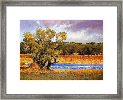 Nature's Trail - Ridgefield Framed Print