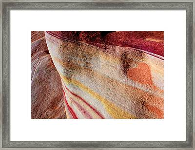 Nature's Valentine Framed Print by Chad Dutson