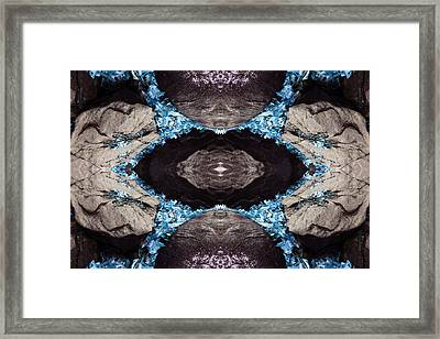 Source Within Framed Print