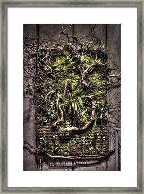 Natures Wall Framed Print by Diego Re