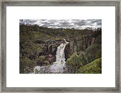 Natures Way Framed Print by Kim Andelkovic