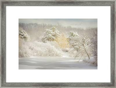 Natures Winter Landscape Framed Print by Julie Palencia