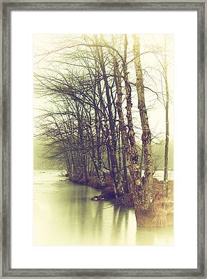 Natures Winter Slumber Framed Print by Karol Livote