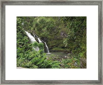 Natures Wonders Framed Print by James McAdams