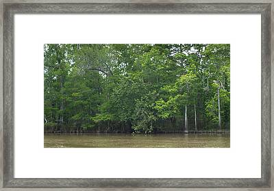 Naturescape 50 Framed Print by Otri Park