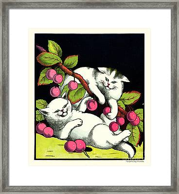 Naughty Cats Play With Cherries  Framed Print by Pierpont Bay Archives