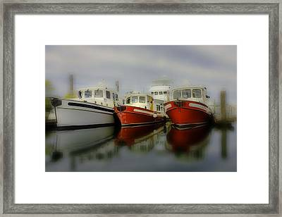 Framed Print featuring the photograph Nautical by Sonya Lang