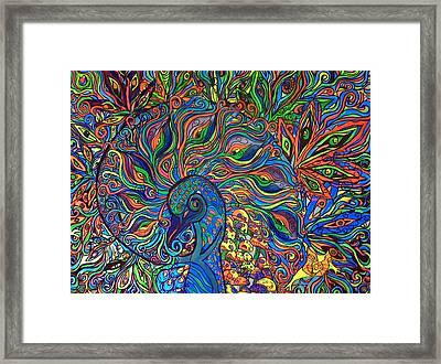 Nautilus Peacock Framed Print