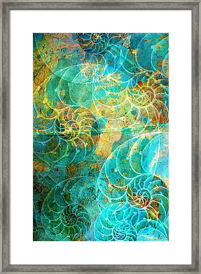 Nautilus Seashells In Aqua Framed Print by Suzanne Powers