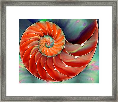 Nautilus Shell Art - Nature's Perfection 2 - By Sharon Cummings Framed Print