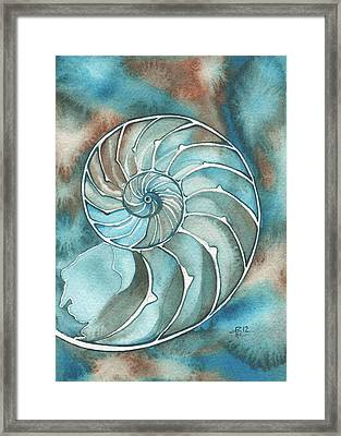 Nautilus Framed Print by Tamara Phillips