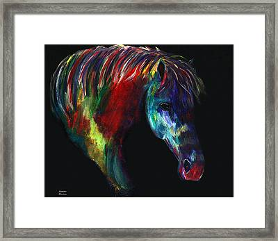 Navajo Beauty Framed Print