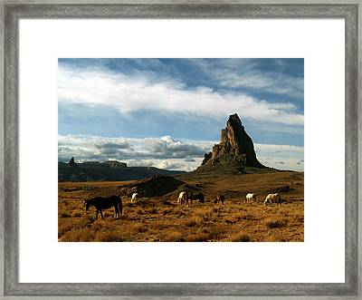Navajo Horses At El Capitan Framed Print