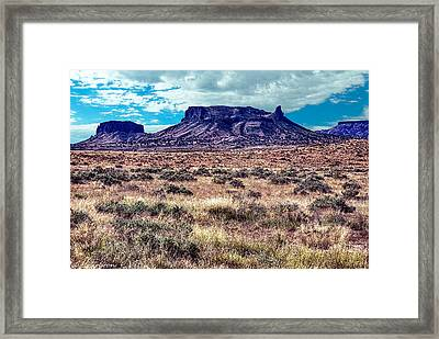 Navajo Reservation Series 1 Framed Print by Bob and Nadine Johnston